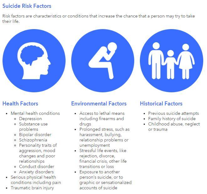 Suicide Risk Factors